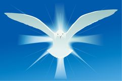 Holy spirit symbol Royalty Free Stock Photo
