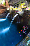 Holy Spring Water Temple,Bali Royalty Free Stock Photo