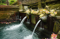 Holy spring water in tirta empul, bali, indonesia Stock Photography