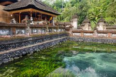Holy water spring in the Pura Tirta Empul, Bali. Indonesia royalty free stock photography
