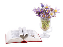 Holybook and spring flowers Royalty Free Stock Photos