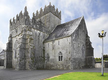 Holycross Abbey. Stock Images