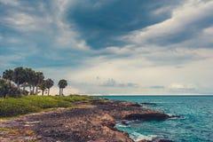Ладонь и тропический пляж в тропическом рае. Временя holyday в Доминиканской Республике, Сейшельских островах, Вест-Инди, Филиппин Стоковые Изображения