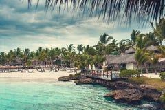 Ладонь и тропический пляж в тропическом рае. Временя holyday в Доминиканской Республике, Сейшельских островах, Вест-Инди, Филиппин Стоковое Фото