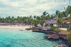 Ладонь и тропический пляж в тропическом рае. Временя holyday в Доминиканской Республике, Сейшельских островах, Вест-Инди, Филиппин Стоковое Изображение