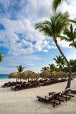 Ладонь и тропический пляж в тропическом рае. Временя holyday в Доминиканской Республике, Сейшельских островах, Вест-Инди, Филиппин Стоковые Изображения RF