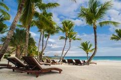 棕榈和热带海滩在热带天堂。夏令时holyday在多米尼加共和国,塞舌尔群岛,加勒比,菲律宾, Bahama 库存照片