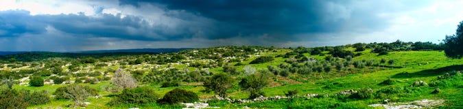 Holyland系列-以色列冬天场面全景1 免版税库存图片