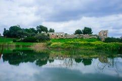 Holyland serie - Afek nationalpark panorama#2 royaltyfri bild