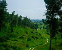 Holyland serie - Gad Hill11 arkivbild