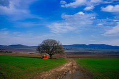 Holyland Series - Golan Heights meadow. Typical landscape of the Golan Heights, northern Israel Royalty Free Stock Photos