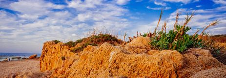 Holyland Series -Palmachim National Park panorama. Limestone and Vegetation with dramatic sky and three silhouettes at the waterline in the background Royalty Free Stock Photo