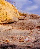 Holylandreeks - Palmachim Nationale Park#4 Royalty-vrije Stock Fotografie