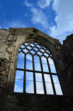Holyrood Abbey Window Ruins Stockbild