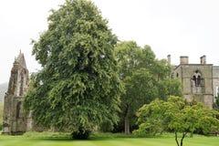 Holyrood abbotskloster Arkivbilder