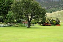 Holyrood Garden in Edinburgh Royalty Free Stock Images