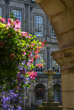 Holyroodhouse Palace. Garden, in Edinburgh, Scotland royalty free stock images
