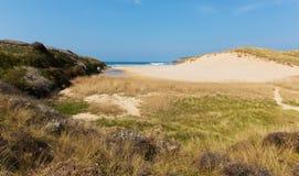 Holywell Bay beach North Cornwall coast England UK near Newquay and Crantock Stock Photo