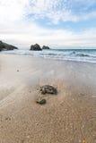 Holywell bay beach Stock Photography