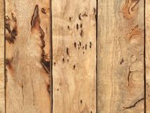 Holz Lizenzfreies Stockbild