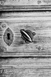 Holz als Hintergrund Stockfoto