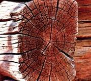 Holz als Hintergrund Lizenzfreie Stockbilder