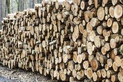 Holz angehäuft oben im Wald Stockfotografie