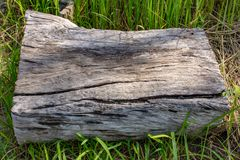 Holz auf dem Gras bei Chaiyaphum Stockfoto