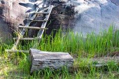 Holz auf dem Grashintergrund als den Steinen Stockfoto