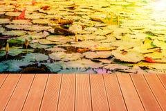 Holz auf einem Lotosteich Stockfotografie