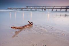 Holz auf Strand mit Pier im Hintergrund Stockfotos
