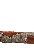 Holz auf Weiß Lizenzfreies Stockfoto