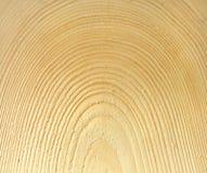 Holz, Beschaffenheit stockfotos