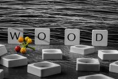 Holz in den Buchstaben Lizenzfreie Stockfotos
