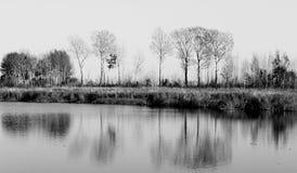 Holz durch den See Stockbild