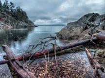Holz entlang felsigem Ufer Stockbild