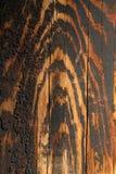 Holz erwarb Tigerfarbton, während es alterte Stockfotos