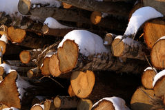 Holz für Energie Stockfotos
