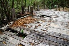 Holz für Hintergrund Lizenzfreie Stockfotografie