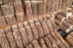 Holz für thanaka produktion Stockfotografie