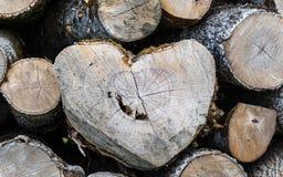 Holz Forest Shape nave Inneres lizenzfreies stockbild
