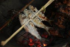Holz gegrillte Fische Lizenzfreies Stockfoto