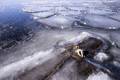 Holz im Eis auf einem See Stockbild