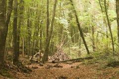 Holz im Fall Stockbild