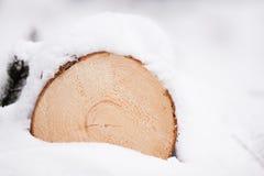 Holz im Schnee Stockbild