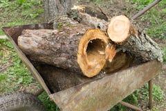Holz im Warenkorb Lizenzfreie Stockfotos