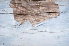Holz knackt Farbe Texturhintergrund für Design und alle kreativen Inspirationen lizenzfreie stockfotos