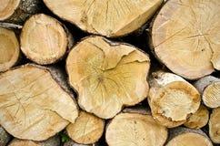 Holz protokolliert Hintergrund Stockbilder
