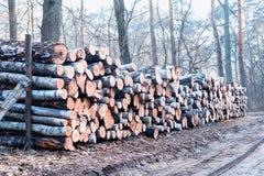 Holz protokolliert Hintergrund Lizenzfreie Stockfotografie