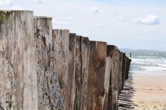 Holz am Strand Lizenzfreies Stockfoto